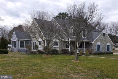 30428 Holly Run, Milton, DE 19968 - #: DESU155296