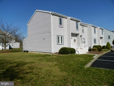 38225 Thistle Court UNIT 9, Frankford, DE 19945 - #: DESU158324