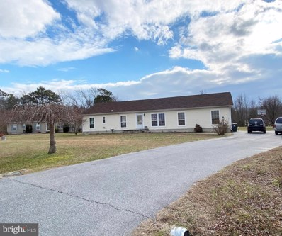 23038 Deep Creek Drive, Lincoln, DE 19960 - #: DESU174778