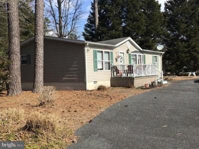 32 White Pine Drive, Millsboro, DE 19966 - #: DESU184300