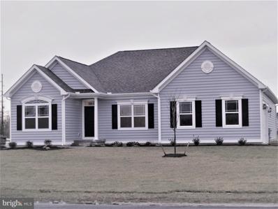 704 Phillips Hill Drive, Millsboro, DE 19966 - #: DESU2002534