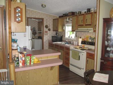 31729 Bridge Drive, Millsboro, DE 19966 - #: DESU2005198