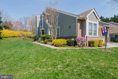 111 Spring Place Way, Annapolis, MD 21401 - #: MDAA392598