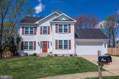 1004 Ice Castle Court, Gambrills, MD 21054 - #: MDAA396084