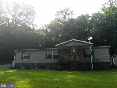 20603 McMullen Highway SW, Rawlings, MD 21557 - #: MDAL130216