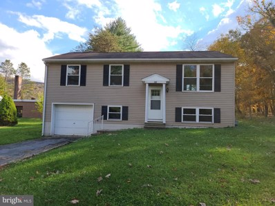 10116 Hopkins Street, Ellerslie, MD 21529 - #: MDAL135572