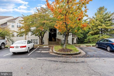 22-A  Deer Run Court UNIT 517, Baltimore, MD 21227 - #: MDBC510220
