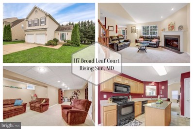 117 Broad Leaf Court, Rising Sun, MD 21911 - #: MDCC100446