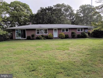 22575 Hog Creek Road, Preston, MD 21655 - #: MDCM100001