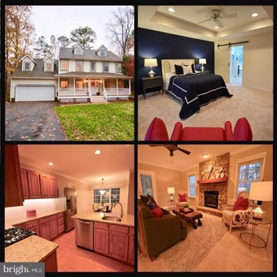 24749 Woods Drive, Denton, MD 21629 - #: MDCM103240