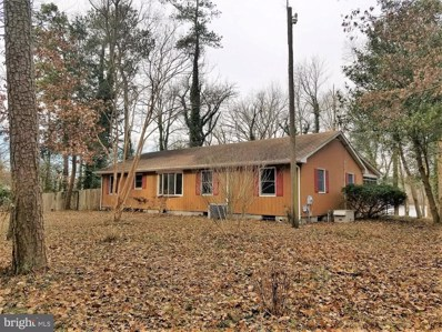 920 Sunday Drive, Denton, MD 21629 - MLS#: MDCM120774