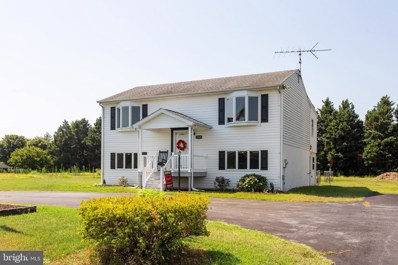 4335 Blink Horn Road, Hurlock, MD 21643 - #: MDDO100013