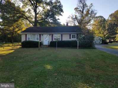 5601 Mount Holly Road, East New Market, MD 21631 - #: MDDO100038