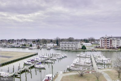 700 Cattail Cove UNIT 408, Cambridge, MD 21613 - #: MDDO111616