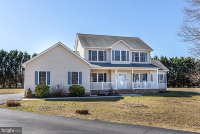 5705 Goose Feather Lane, East New Market, MD 21631 - #: MDDO121654