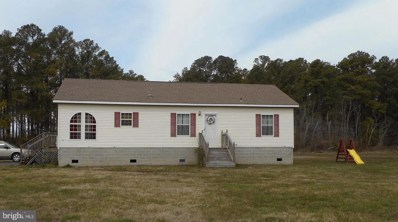 728 Hills Point Road, Cambridge, MD 21613 - #: MDDO121872