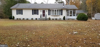 937 Parsons Drive, Madison, MD 21648 - #: MDDO124558