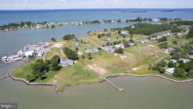 2507 Old House Point Road, Fishing Creek, MD 21634 - #: MDDO125182