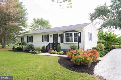 5519 Mount Holly Road, East New Market, MD 21631 - #: MDDO2000706