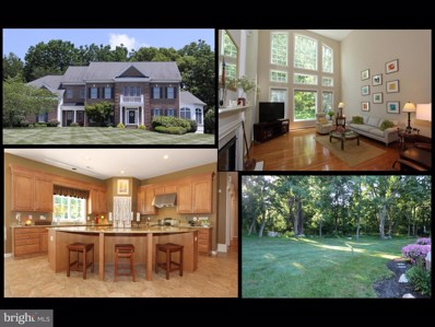 4303 Saratoga Springs Court, Middletown, MD 21769 - #: MDFR250658