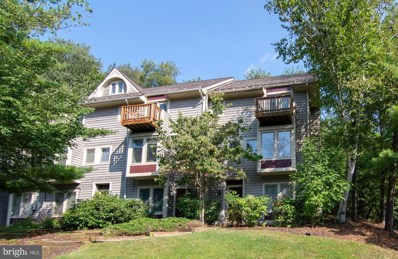 4 Lakeview Court UNIT 1D, Mc Henry, MD 21541 - #: MDGA130256
