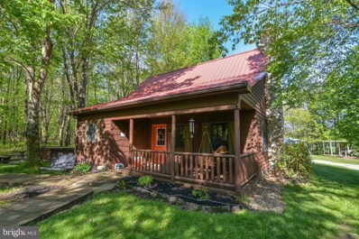 150 Hines Drive, Swanton, MD 21561 - #: MDGA130814