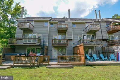 4 Bright Passage Road UNIT 1D, Mc Henry, MD 21541 - #: MDGA131148