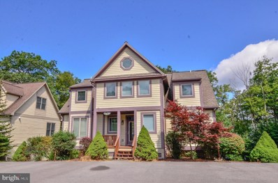 100 Silver Tree Lane, Oakland, MD 21550 - #: MDGA131758