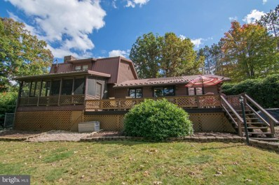 494 Pritts Road, Swanton, MD 21561 - #: MDGA133662