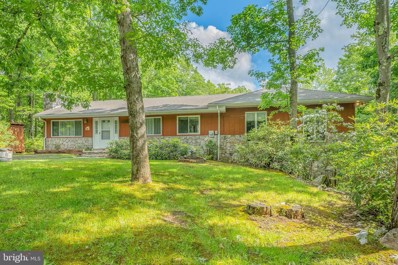 393 Fox Tail Road, Oakland, MD 21550 - #: MDGA2000134