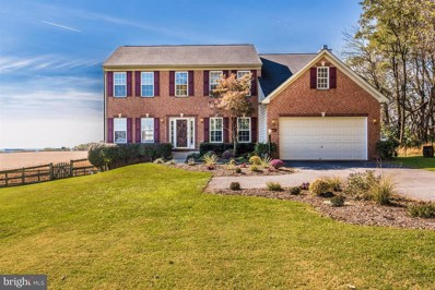 16621 Frederick Road, Mount Airy, MD 21771 - #: MDHW100006