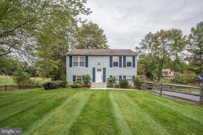 4701 Hale Haven Drive, Ellicott City, MD 21043 - #: MDHW100099