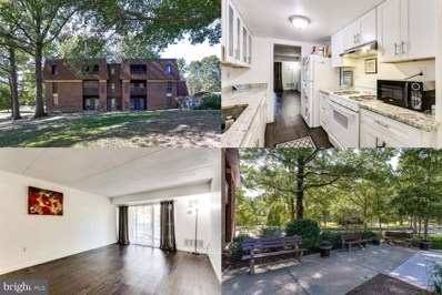 5255 W Running Brook Road UNIT 101, Columbia, MD 21044 - #: MDHW270306