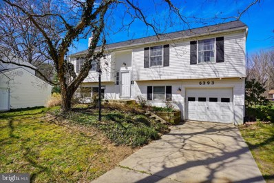 6393 Tawny Bloom, Columbia, MD 21045 - #: MDHW276986