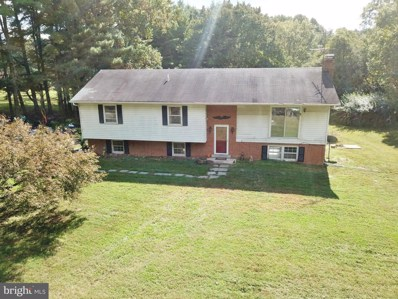 11905 Frederick Road, Ellicott City, MD 21042 - #: MDHW286224