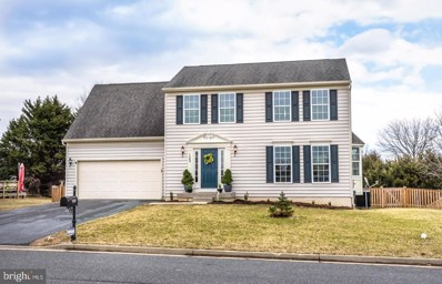 123 Trafford Drive, Chestertown, MD 21620 - #: MDKE113878