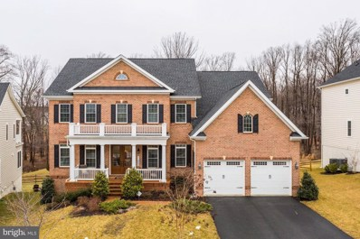 11863 Peppervine Drive, Clarksburg, MD 20871 - #: MDMC620328