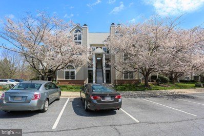 913 Hillside Lake Terrace UNIT 411, Gaithersburg, MD 20878 - #: MDMC751178