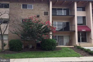 7605 Fontainebleau Drive UNIT 2340, New Carrollton, MD 20784 - #: MDPG602980