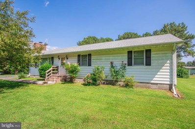 5079 Manokin Road, Crisfield, MD 21817 - #: MDSO102274