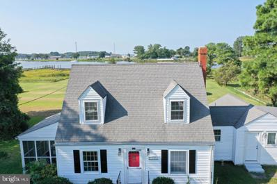 23351 Cove Road, Deal Island, MD 21821 - #: MDSO2000414