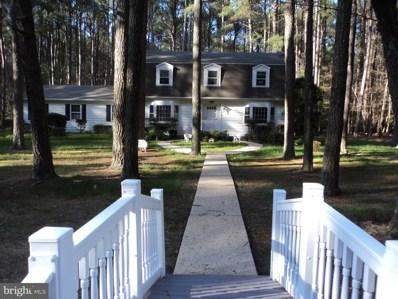 28256 Widgeon Terrace, Easton, MD 21601 - #: MDTA137326