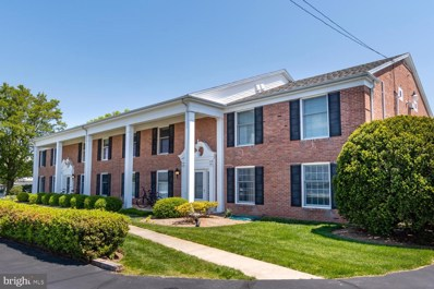 408 Strand UNIT 1, Oxford, MD 21654 - #: MDTA138586