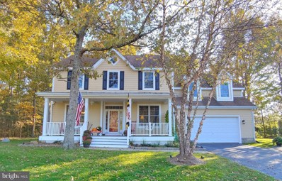 25001 Back Creek Drive, Saint Michaels, MD 21663 - #: MDTA139752