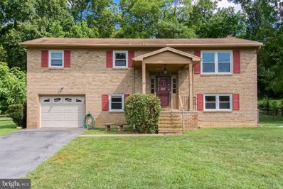 20817 Emerald Drive, Hagerstown, MD 21742 - #: MDWA166664