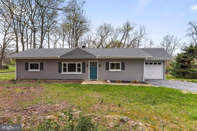 10114 Crystal Falls Drive, Hagerstown, MD 21740 - #: MDWA170054