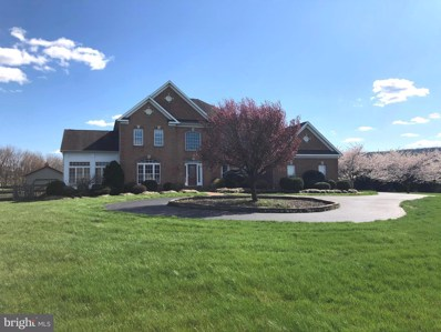 4013 Trego Road, Keedysville, MD 21756 - #: MDWA170390