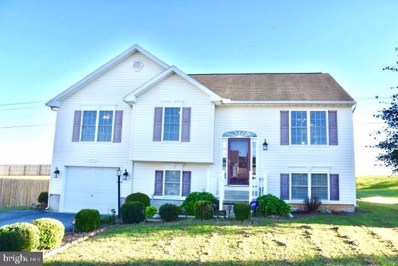 18513 Nathan Court, Hagerstown, MD 21740 - #: MDWA174670