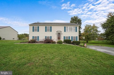 11703 White Pine Drive, Hagerstown, MD 21740 - #: MDWA2000161
