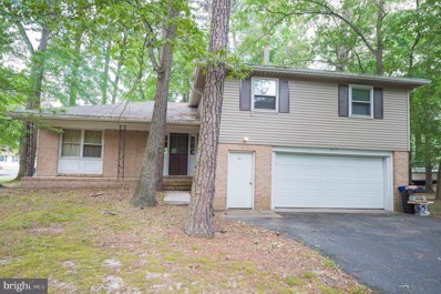 407 Forest Drive, Fruitland, MD 21826 - #: MDWC103704